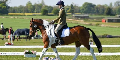 BUA Dressage Saddle