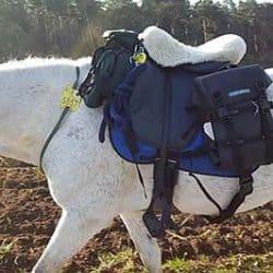 BUA Endurance Saddle