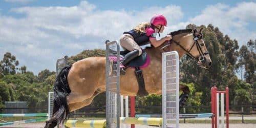 BUA Jump Saddle 1